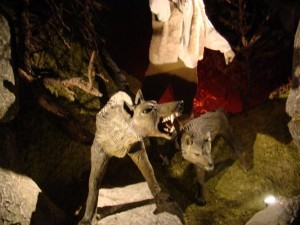 musee-bete-gevaudan